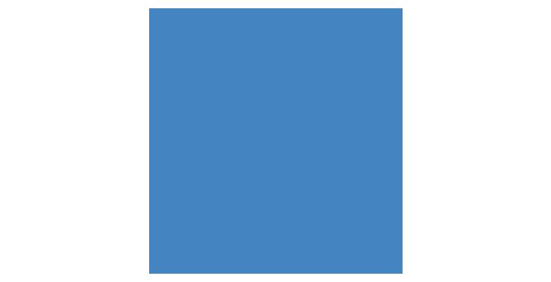 ANAVIE se dote d'un statut consultatif spécial à l'ECOSOC